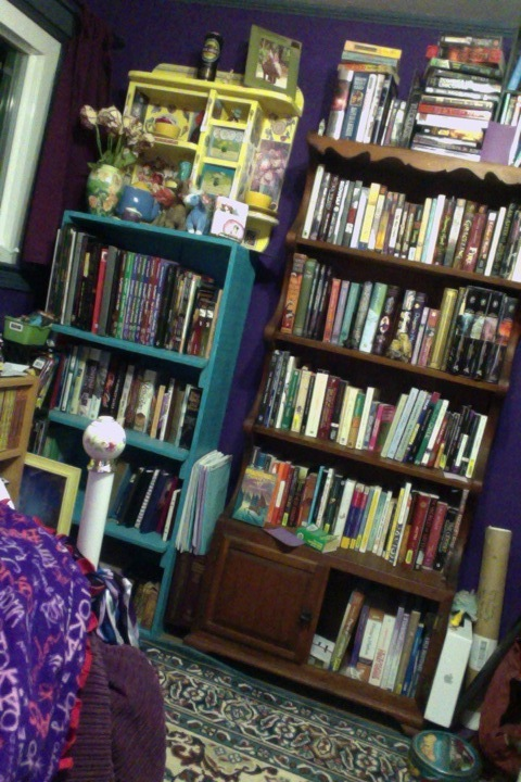 This photo shows a scrap of the recently liberated floorspace, as well as all the BOOKS I can now access unimpeded.